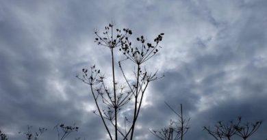 ISU Hunedoara, avertizare meteo : COD PORTOCALIU