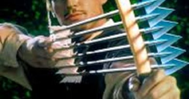 Robin Hood la tinerețe, ce implicare are Poliția?